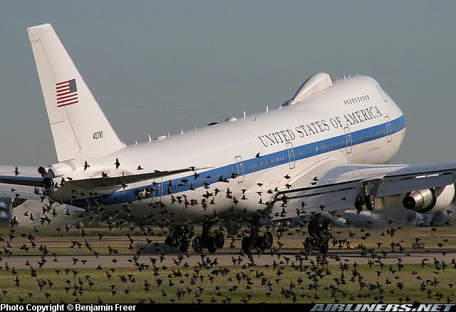Photo of Avian Radar, A  Solution to Bird Strikes?
