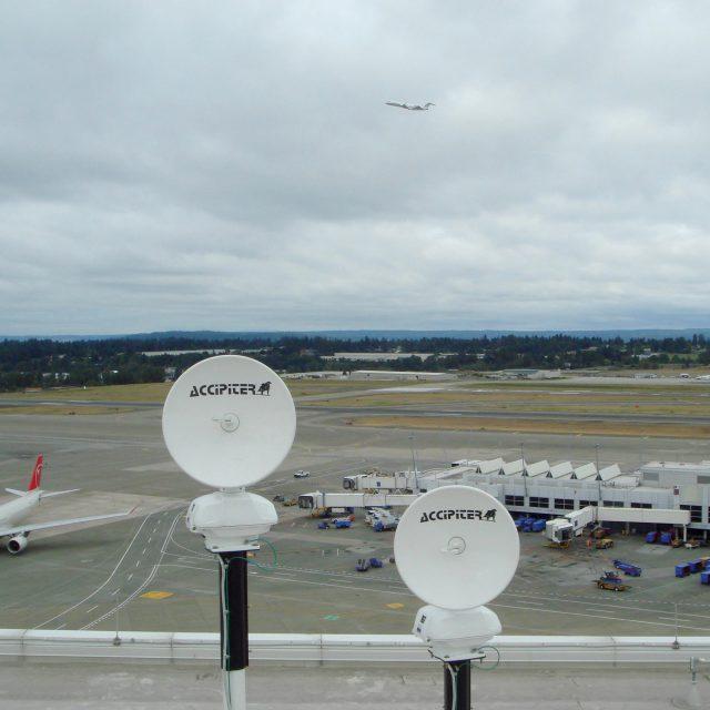 Dual 3D Avian Radar System